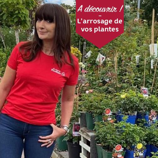 L'arrosage de vos plantes