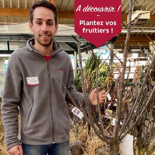 Toni Fruitiers