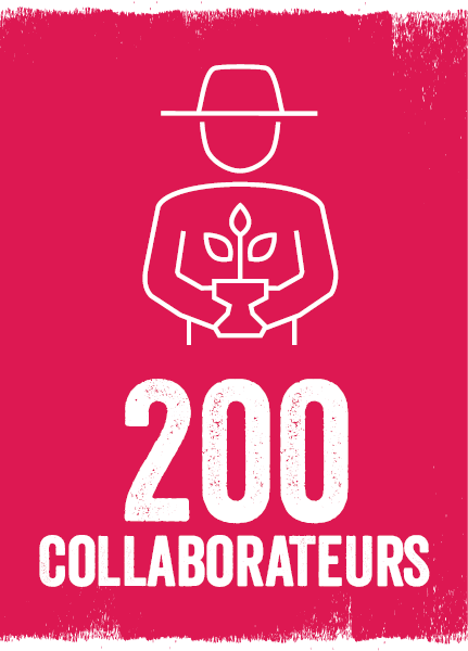 Collaborateurs